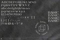 Digitany - Multipurpose Pixel-Serif Font Product Image 6