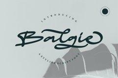 Web Font Balgie - A Stylish Script Font Product Image 1