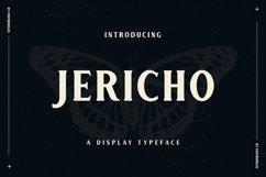 Web Font Jericho Product Image 1