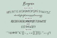 Bergenia Script FONT DUO Product Image 6