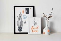 Home Plants in pots , gardening SVG bundle Product Image 3