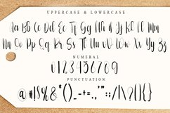 Solaytia | Modern Script Font Product Image 4