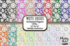 White Daisies - 16 Digital Papers/Backgrounds Product Image 1