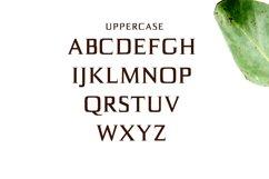Birtle Serif Font Family Product Image 2