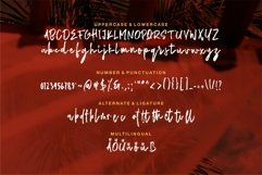 Web Font Imperial - New Brush Font Product Image 5