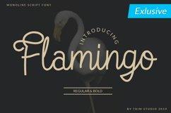 Flamingo - Monoline Script Font Product Image 1