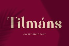 Tilmáns Product Image 1