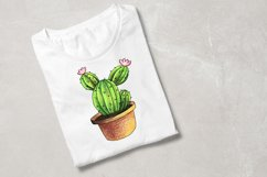 CACTI. ORIGINAl DRAWING WITH COLOR PENCILS ELEMENTS. Product Image 6