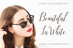 Laniesky - Calligraphy Font Product Image 6