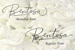 Bentosa Script Product Image 2