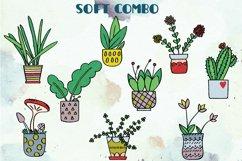 House Plants Color, Cactus, Flower Pot, Hanging Indoor Plant Product Image 2