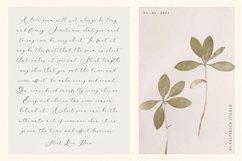 Arletta Stylist Modern Script Font Product Image 4