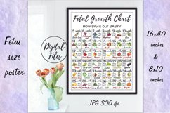 Printable Fetal Growth Chart Poster 2 JPG instant downloads Product Image 1