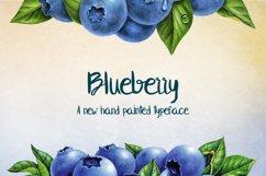 Blueberry Product Image 1