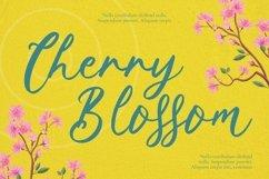 Web Font Springtown Font Product Image 5