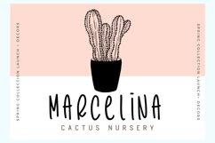 Cactus Story Product Image 3