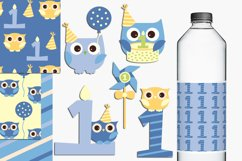 Baby boy first birthday party owls illustrations Product Image 1