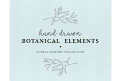 Hand drawn floral illustrations - botanical graphics lineart Product Image 1