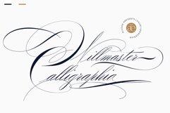 Willmaster Calligraphia Product Image 1