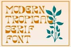 Lemonia | Modern Serif Product Image 4