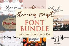 stunning script font bundle Product Image 1