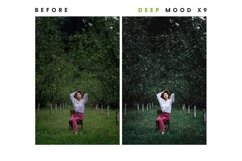 Deep Mood - Lightroom & Photoshop Camera Raw Presets Product Image 25