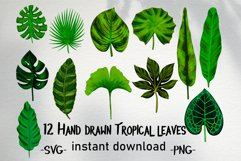 Hand drawn tropical leaves bundle Product Image 1