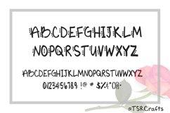 Monogram font - Vic's Love Letters Product Image 2