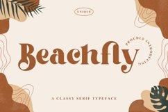 Beachfly - A Classy Serif Typeface Product Image 1