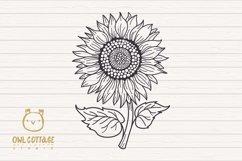 Sunflower Monograms svg, Sunflower mini bundle, Sunflower cl Product Image 4