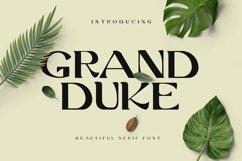 Grand Duke Beauty Serif Font Product Image 1