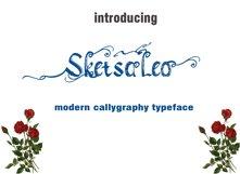 SketsaLeo Product Image 1