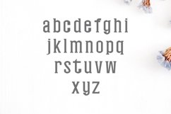 Nasya Slab Serif 4 Font Family Pack Product Image 2