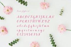 Books Script—handwritten font Product Image 4