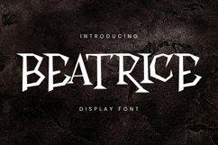 Web Font Beatrice Font Product Image 1