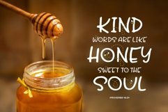 Honey and Bee Font Product Image 4