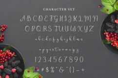 Web Font Raspberry Product Image 2