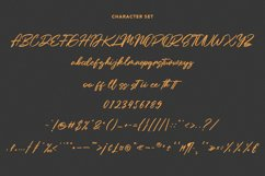 Holly Wings Calligraphic Font Product Image 8