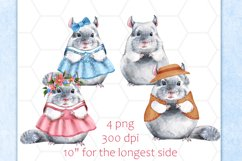 Chinchillas, 4 png animals. Watercolor clip art Product Image 2