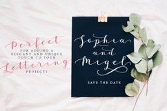 Janges script Product Image 6
