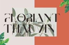 Brescia   Modern Serif Product Image 6
