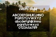 Zebra Product Image 3