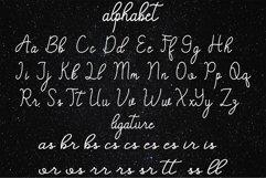 Angelica signature script Product Image 5