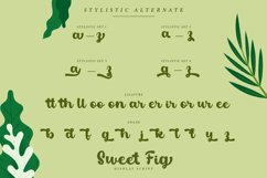 Sweet Fig Product Image 5