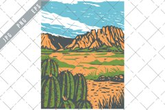 Chihuahuan Desert covering parts of Big Bend National Park Product Image 1