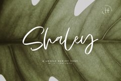 SHALEY SCRIPT Product Image 1