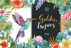 Golden Tropics Product Image 1