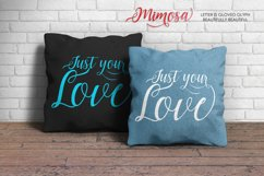 Mimosa Script Product Image 6