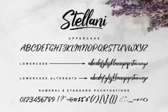 Stellani // a Casual Handlettering Font Product Image 2
