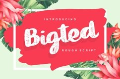 Bigted   Rough Script Font Product Image 1
